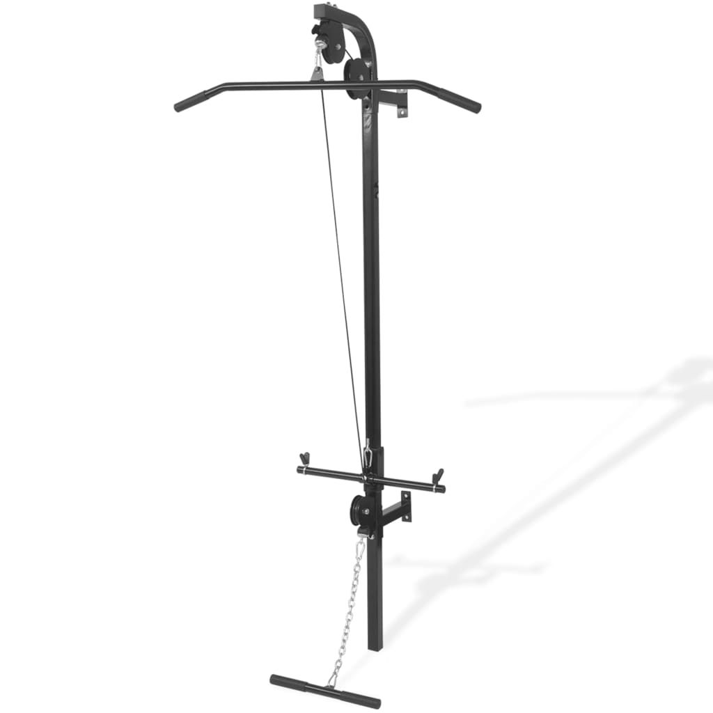 Wall-mounted Home Gym with 2 Pulleys