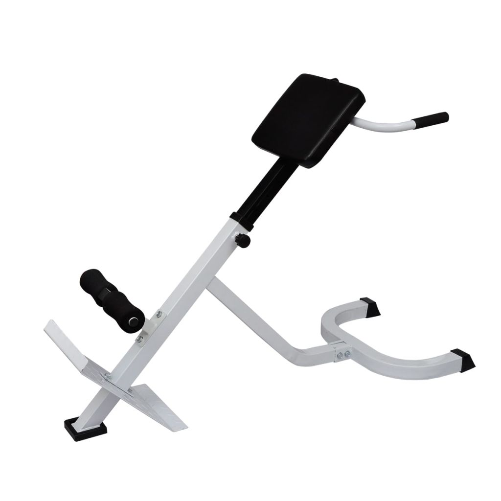 Back Extension Bench